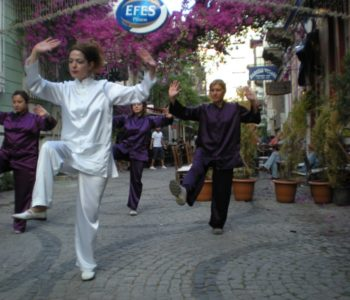 Konak-bel-Als-Fest-05-2010 - DSCN4466